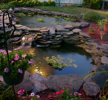 Ponds/Water Gardens/Aquascaping photo 2